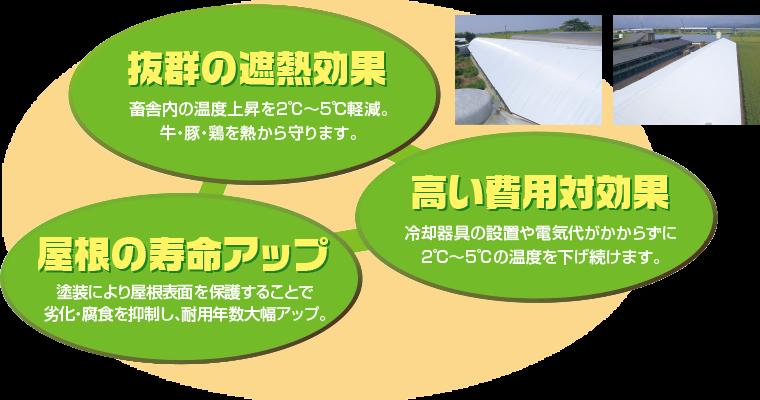 抜群の遮熱効果 高い費用対効果 屋根の寿命アップ